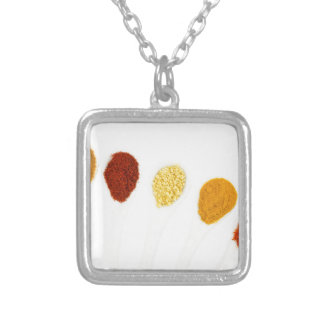 Various seasoning spices on porcelain spoons silver plated necklace