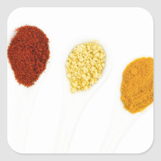 Various seasoning spices on porcelain spoons square sticker