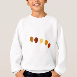 Various seasoning spices on porcelain spoons sweatshirt