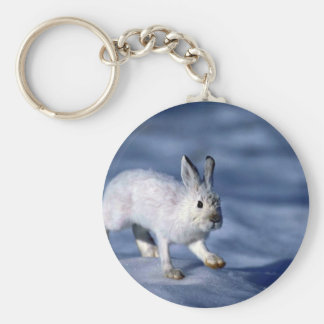 Varying Hare/Snowshoe Rabbit on open snow Keychains