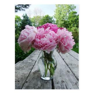 Vase of Pink Peonies Postcards