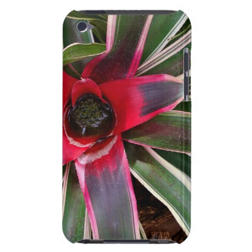 Vase Plant Case-Mate iPod Touch Barely There Case iPod Touch Case