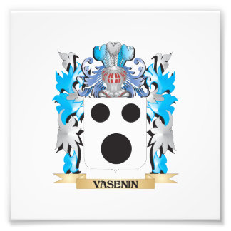 Vasenin Coat of Arms - Family Crest Art Photo