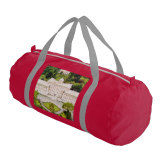 Vatican painting gym bag