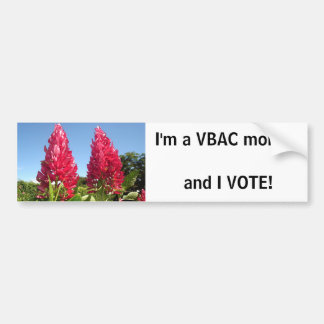 VBAC mum - I VOTE! bumpersticker Bumper Sticker