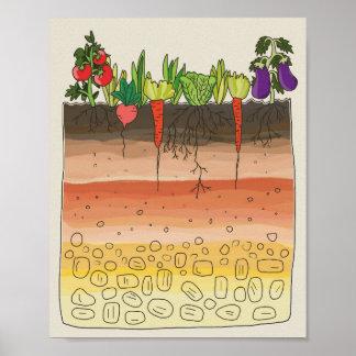Vegetable garden soil earth layers kitchen decor poster