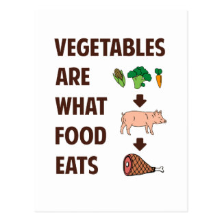 Vegetables Are What Food Eats Postcard