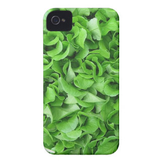 vegetarian lettuce iPhone case