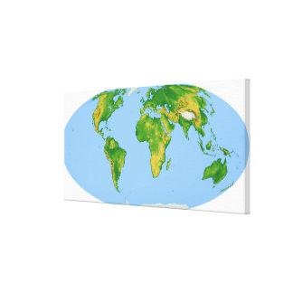 Vegetation Map 4 Stretched Canvas Print