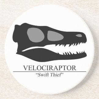 Velociraptor Skull Coaster