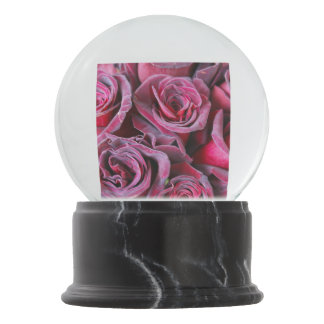 Velvet Beauty Snow Globes