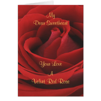 Velvet Red Rose All Occasions Greeting Card