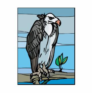 Venda Vulture Photo Cutout