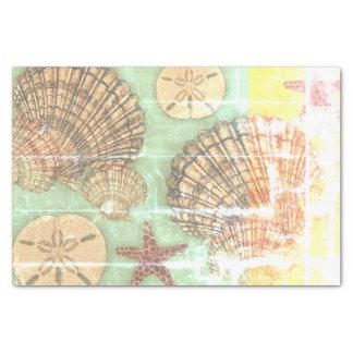 Vendredi Seashells Tissue Paper