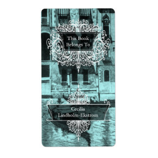 Venetian Monotone in Shades of Aqua & Black