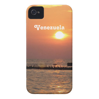 venezuela-2.jpg Case-Mate iPhone 4 cases