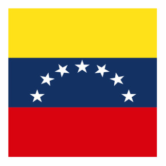 Venezuela Standing Photo Sculpture