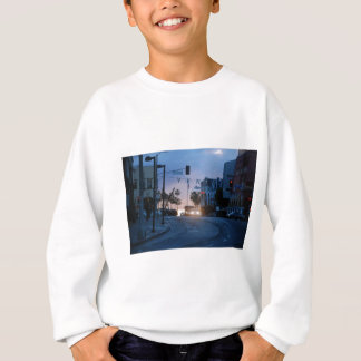 venice sunset sweatshirt