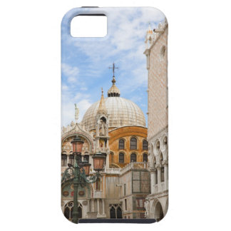 Venice, Veneto, Italy - Birds are perched on a iPhone 5 Cover