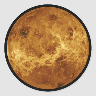 Venus Classic Round Sticker