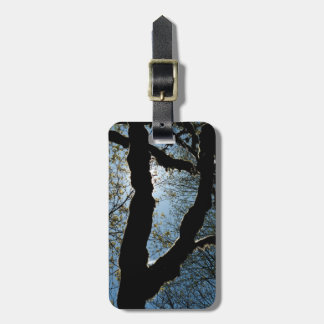 VER LUGGAGE TAGS