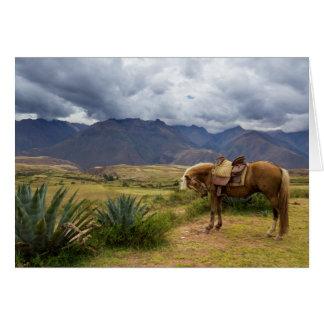 Verdant Sacred Valley Horse Card