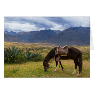 Verdant Sacred Valley Horse II Card