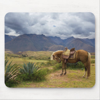 Verdant Sacred Valley Horse Mouse Pad