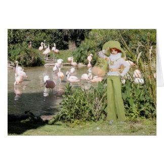 Verdi, Flamingos at the Houston Zoo Card