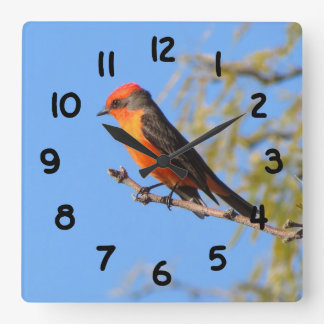 Vermilion Flycatcher Square Wall Clock