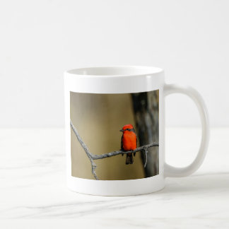 Vermillion Flycatcher Accessories and Gifts Coffee Mug
