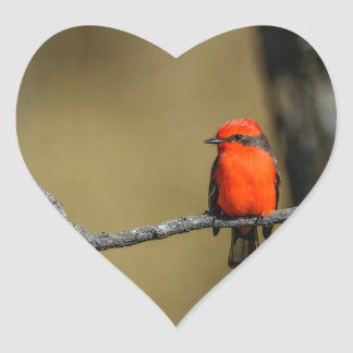 Vermillion Flycatcher Accessories and Gifts Heart Sticker