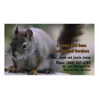 Vermin Exterminator Pest Control Pack Of Standard Business Cards