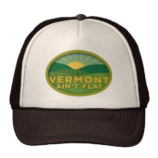 Vermont Ain't Flat Mesh Hat