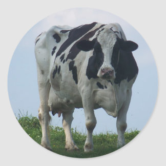 Vermont  Black and White Dairy Cow Classic Round Sticker