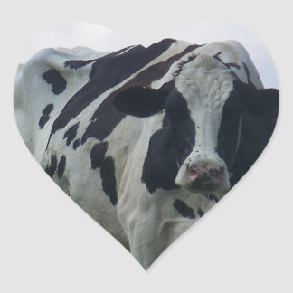 Vermont  Black and White Dairy Cow Heart Sticker