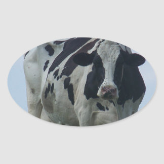 Vermont  Black and White Dairy Cow Oval Sticker