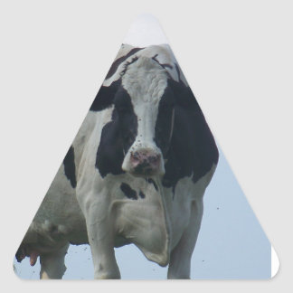Vermont  Black and White Dairy Cow Triangle Sticker