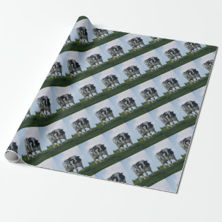 Vermont  Black and White Dairy Cow Wrapping Paper