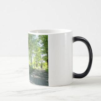vermont country road magic mug