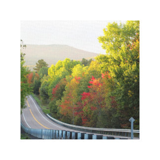 Vermont Foliage Canvas Print