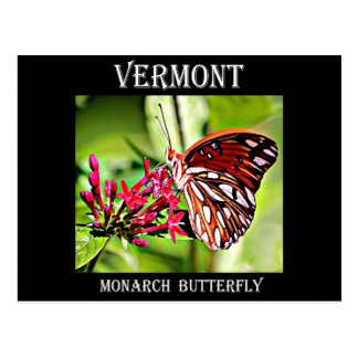 Vermont Monarch Butterfly Postcard