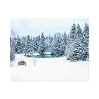 Vermont snow lakes canvas print