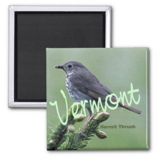 Vermont State Bird Hermit Thrush Fridge Magnet