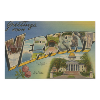 Vermont (State Capital/Flower) - Poster