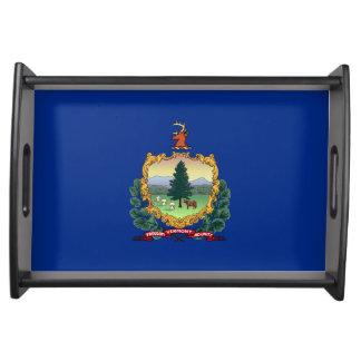 vermont state flag united america republic symbol serving tray
