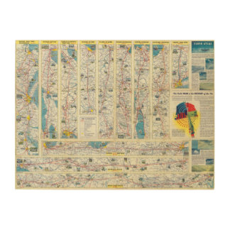 Verso American Airlines system map Wood Print