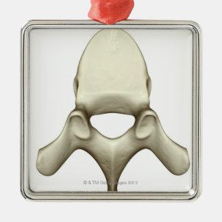 Vertebrae Metal Ornament