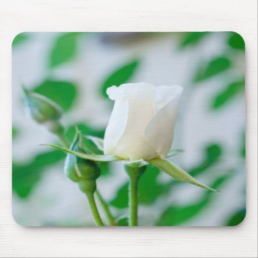 Vertical Mousemat with White Rose Bud