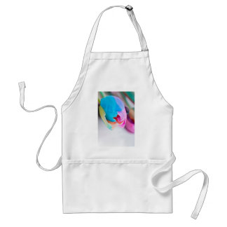 Vertical shoot of unusual multi colored tulip standard apron